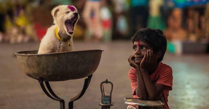 Фотографы со всего мира делают великолепные фото детей и животных (27фото)
