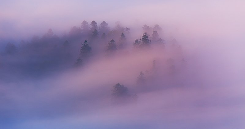 Горы в тумане - красивейшее зрелище на Земле (12фото)