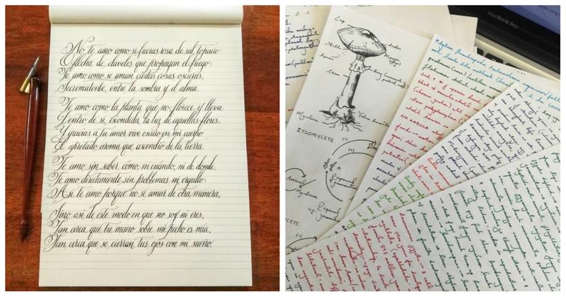 Искусство красивого письма: 50 примеров идеального почерка (51фото)