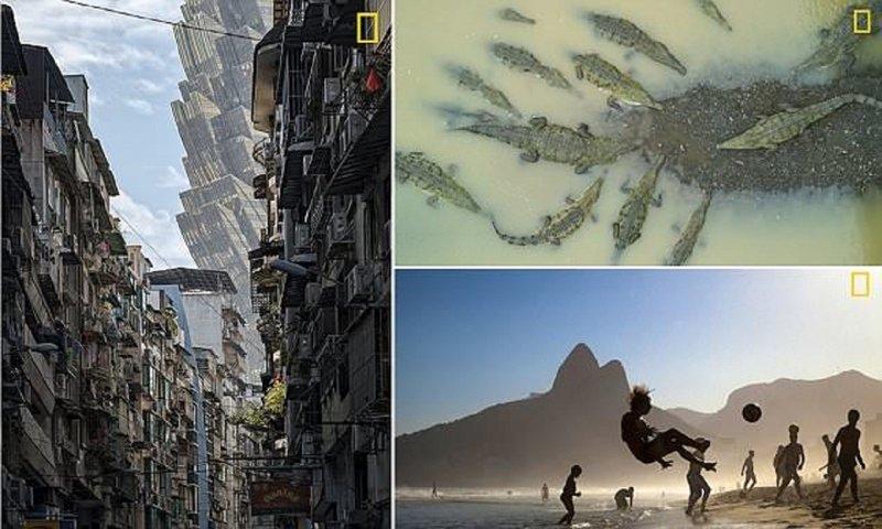 National Geographic подводит итоги конкурса на лучшего трэвел-фотографа (11фото)