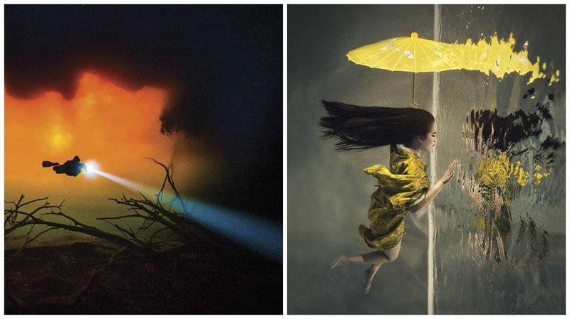 Победители конкурса подводной фотографии Through Your Lens (11фото)