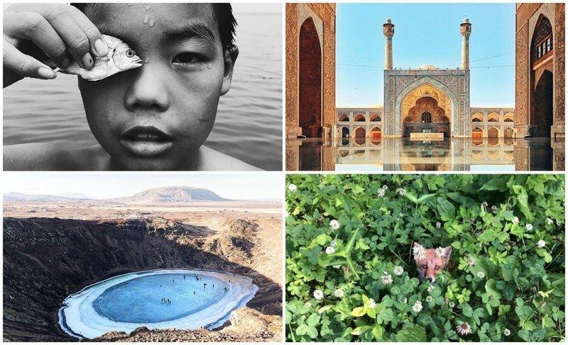 35 лучших фотографий, сделанных на iPhone в 2018 году (36фото)