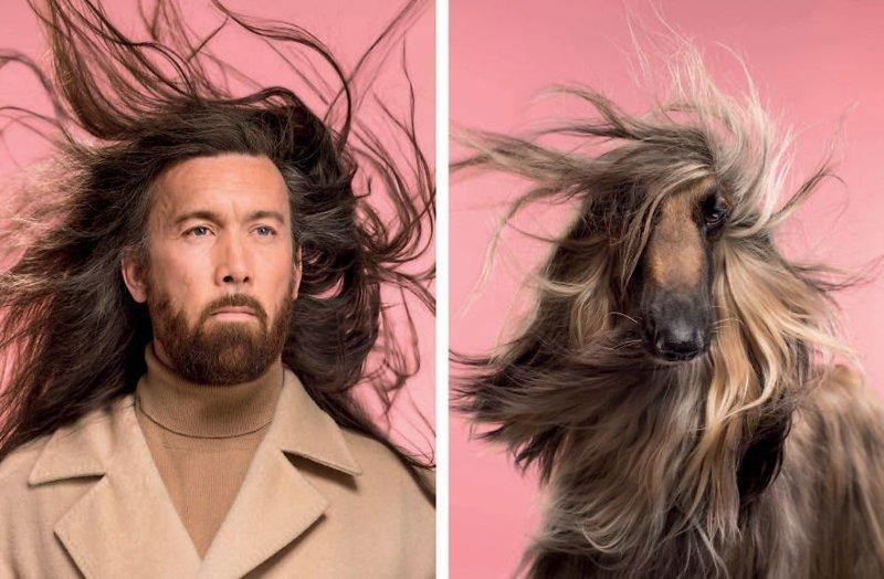 Британский фотограф сделал забавную серию снимков, в которой наглядно показал сходство собак и их хозяев (9фото)