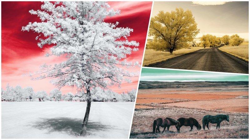 Инфракрасная фотография: когда обычные пейзажи превращаются в инопланетные (31фото)