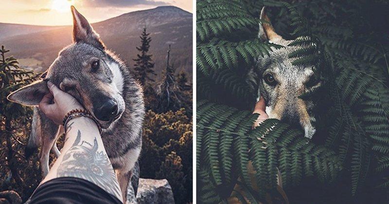 Устали от флешмоба #FollowMeTo? Фотографии этого парня с собакой в тысячу раз лучше! (21фото)