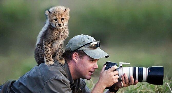Почему фотоохота — самое лучшее занятие в мире? (20фото)