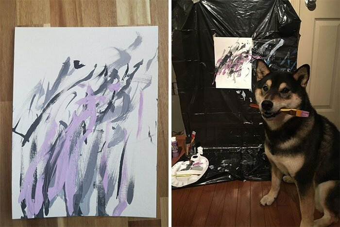 Собака рисует картины, которые пользуются большой популярностью! (7фото+1видео)