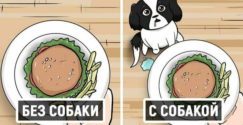 17 комиксов о жизни собачки Руби, которые развеселят каждого, кто хотя бы день прожил с собакой (19фото)