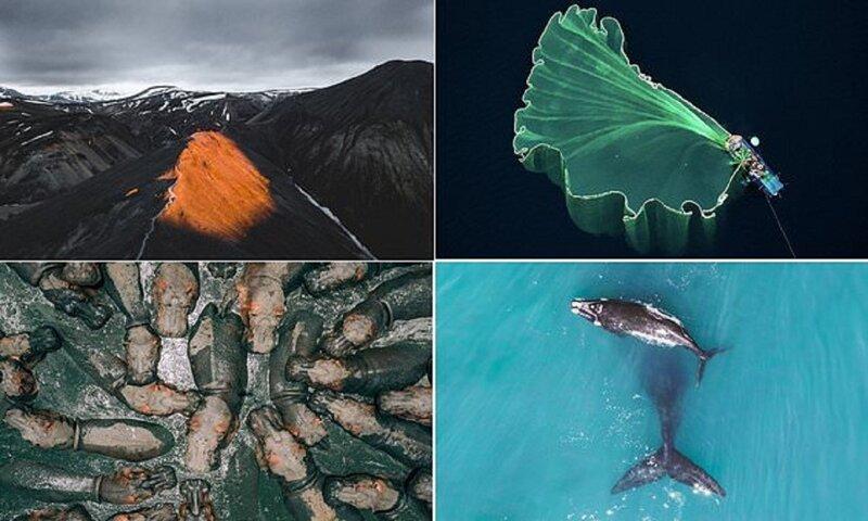 Участники конкурса дрон-фотографии снимают чудеса с небес (10фото)