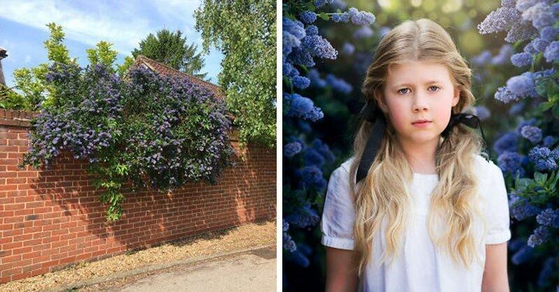Фотограф из Британии доказала, что и в скучной повседневной локации можно сделать шикарный кадр (6фото)