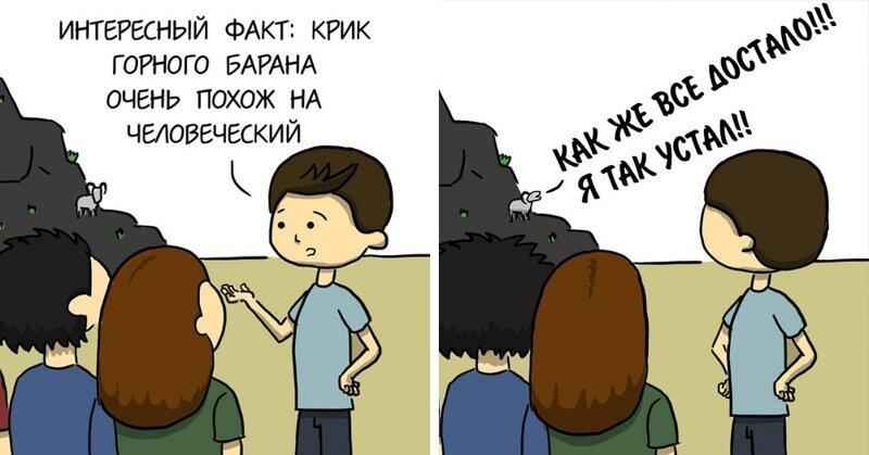 20 забавных комиксов с доброй иронией о проблемах, знакомых каждому (21фото)