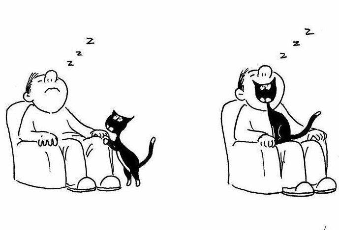20 остроумных комиксов Tango с совершенно неожиданным финалом (20фото)