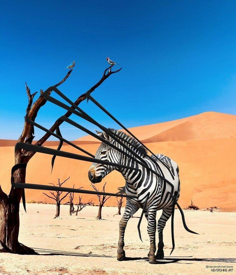 Животный (и не только) сюрреализм Адэ Маолана (24фото)
