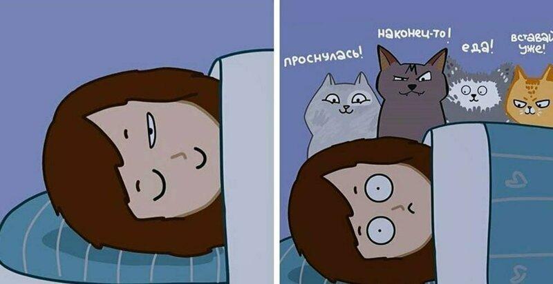 Иллюстратор рисует комиксы о жизни с 4 кошками и раскрывает все их пушистые тайны (25фото)