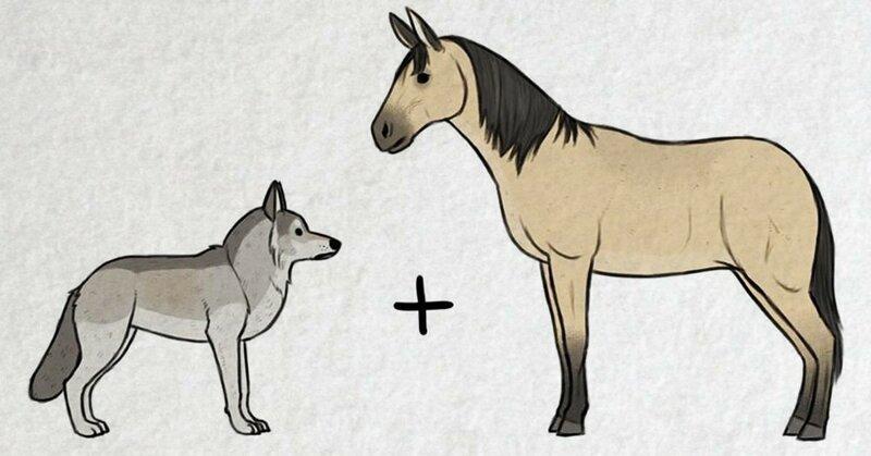 Волк + пухлый тролль: художник представил и нарисовал, как появились на свет разные породы собак (7фото)