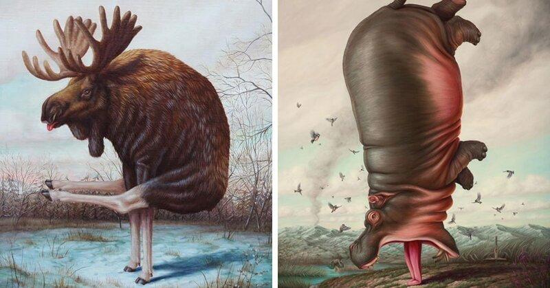 Художник из Франции представил, как выглядели бы животные, займись они йогой (16фото)