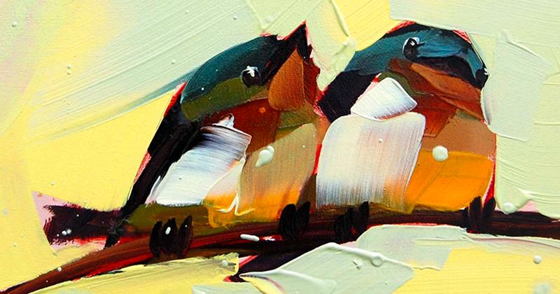 Райские птицы Анжелы Мултон (31фото)