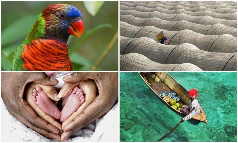 50 потрясающих фотографий, показывающих красоту нашего мира (51фото)
