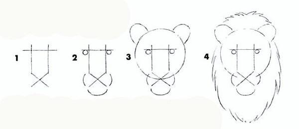 Рисуем льва карандашом (3фото)