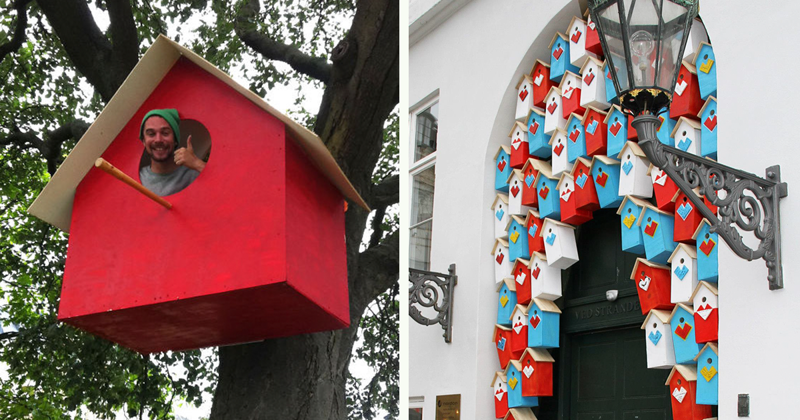 Датский художник сколотил уже 3500 скворечников из вторсырья, чтобы удержать птиц в городах (17фото)
