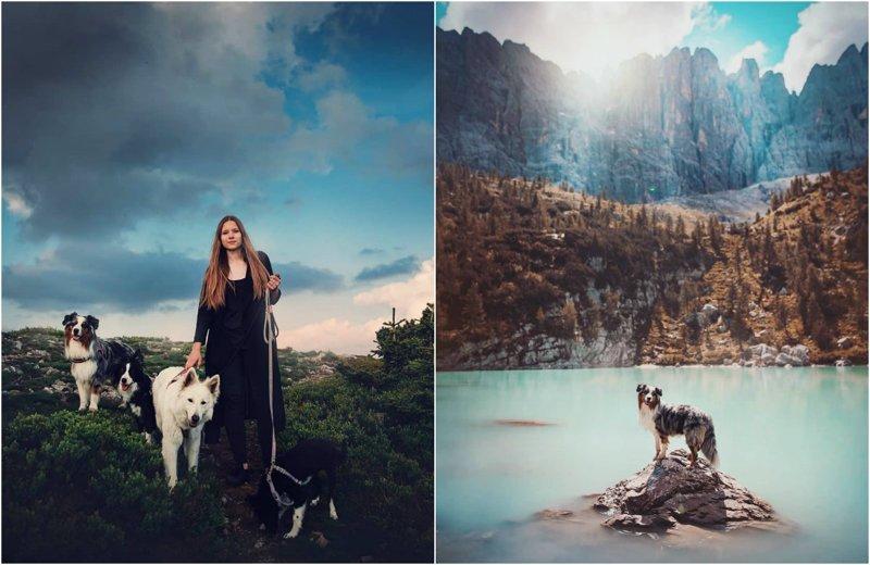 Симпатичные пёсики на снимках Кристины Квапиловой (26фото)