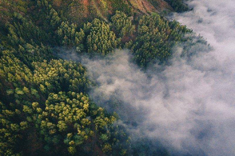 Шведский фотограф снимает смену сезонов с высоты птичьего полета (8фото)