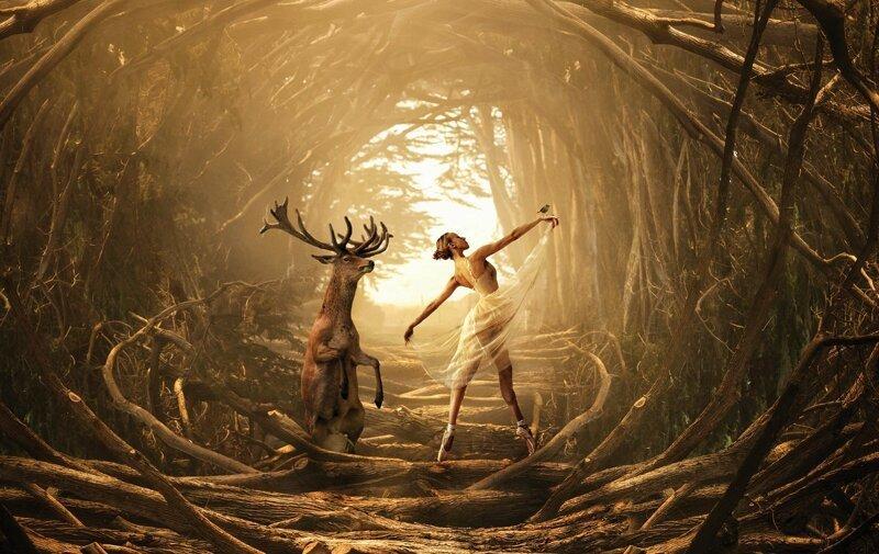 Мир сказок и фантазий Марселя ван Льюита (30фото)
