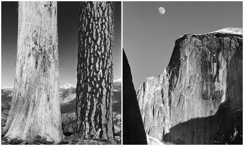 Винтажные работы Анселя Адамса - мастера черно-белых пейзажей (11фото)