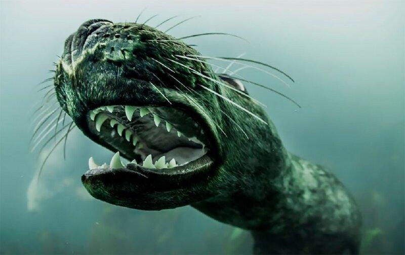Морские котики - красавцы и чудовища (15фото)