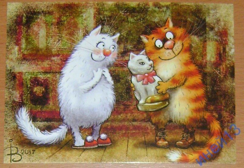 Коты Минской художницы Ирины Зенюк (17фото)
