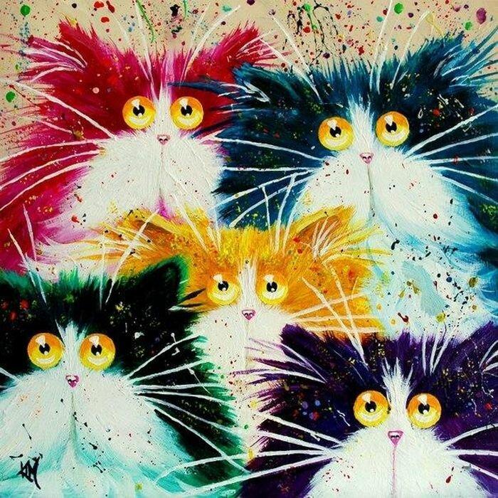 Радужные кошки от Ким Хаскинс (19фото)