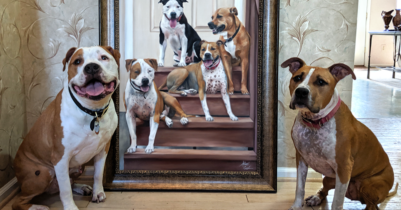 Художница пишет портреты домашних любимцев, и вот несколько готовых работ рядом с