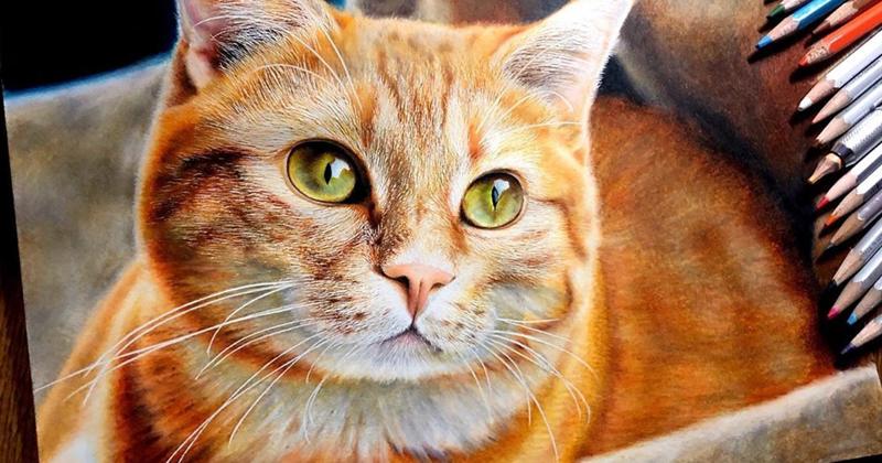 Кошки в жанре гиперреализма: невозможно поверить, что это не фото! (24фото)