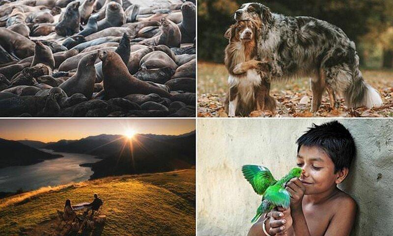 Любовь вокруг нас: лучшие фотографии конкурса Agora про любовь и нежность (11фото)