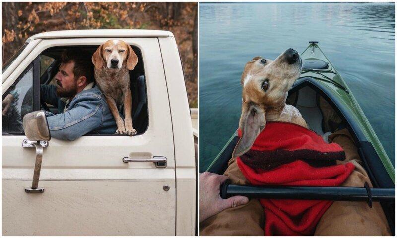 Фотограф путешествует со своей собакой, и делает крутейшие снимки (28фото)