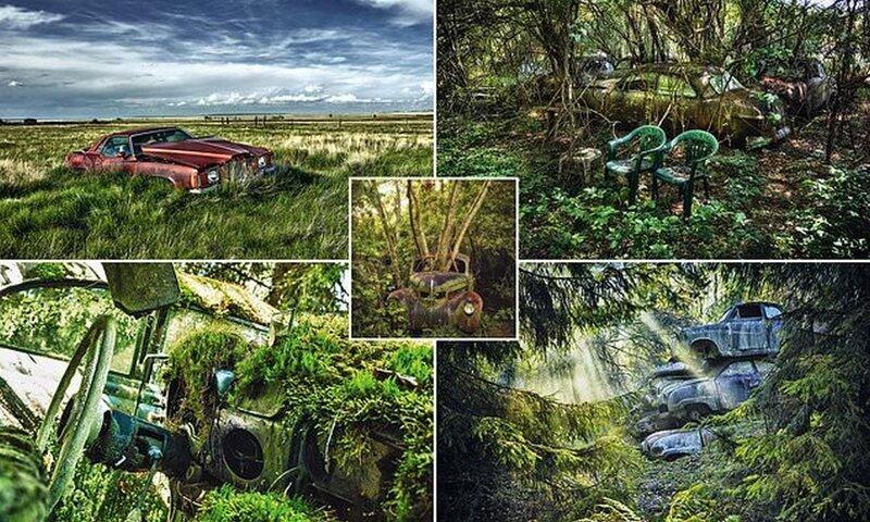 Ржавчина и разрушение: завораживающие фотографии брошенных автомобилей (12фото)
