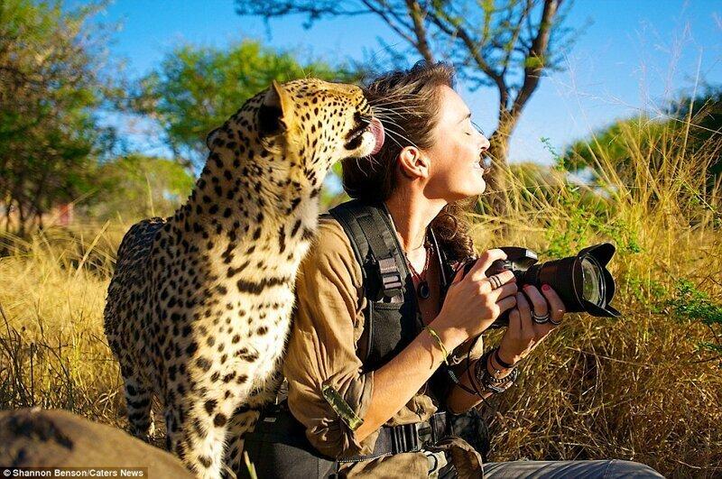 Бесстрашная фотограф из ЮАР, с которой дикие звери становятся ручными (15фото)