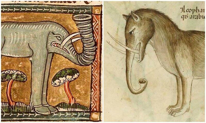 Как художники средневековья представляли себе слонов (16фото)