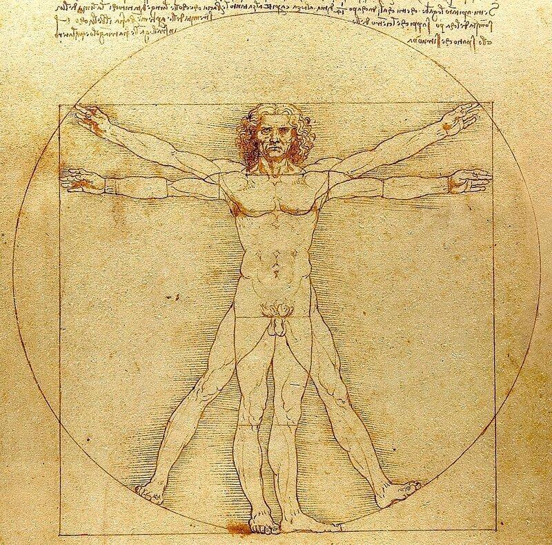 Почему этот рисунок стал знаменитым? Леонардо да Винчи и секрет «Витрувианского человека» (9фото)