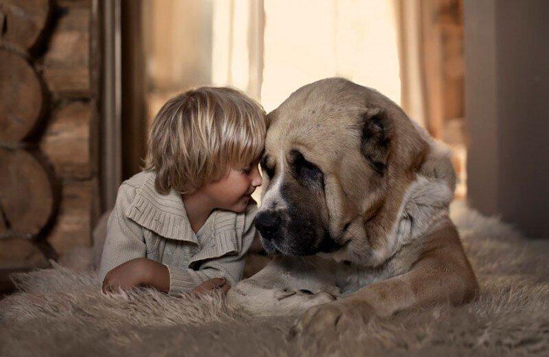 Россиянка создает потрясающие фотографии своих детей с животными в деревне (25фото)
