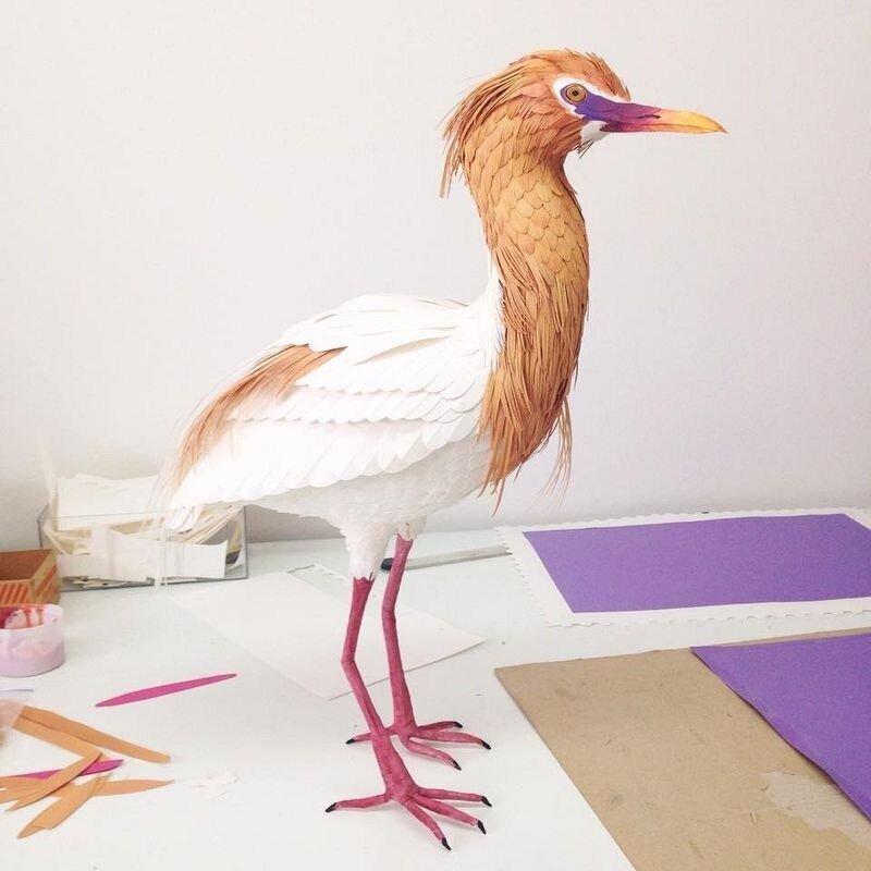 Бумажные птицы Дианы Бельтран (22фото)