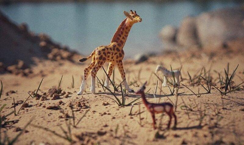 Живой мир игрушек глазами ребенка (26фото)