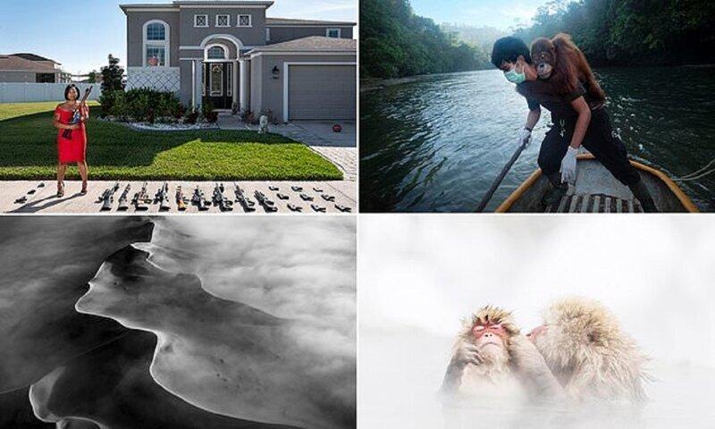 Фотоконкурс AllAbout Photo Award: лучшие снимки (17фото)