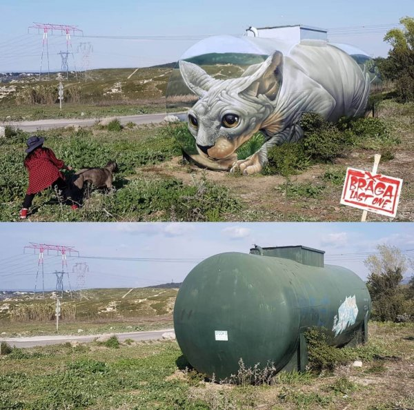 Уличный художник из Франции Том Брагадо Бланко заставляет стены оживать (14 фото)