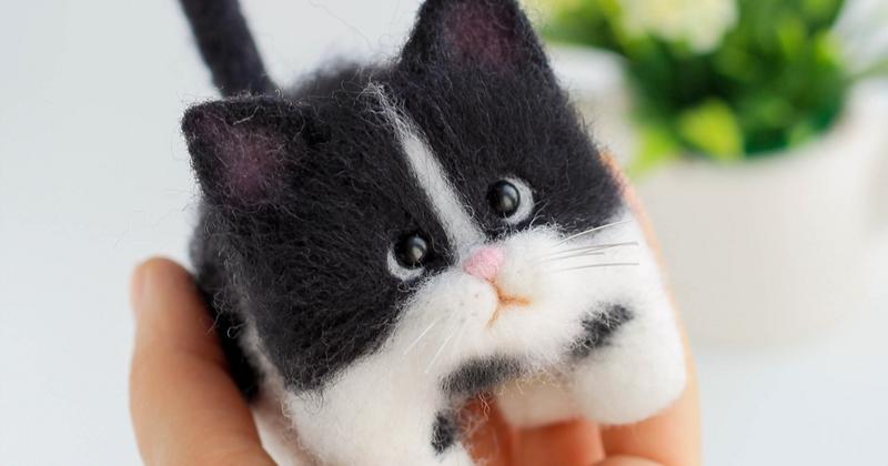 Войлочные котята рукодельницы из Северодвинска (40фото)