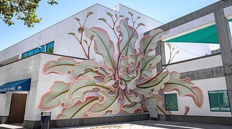 Художник нарисовал потрясающее растение на 6 стенах здания (9фото)