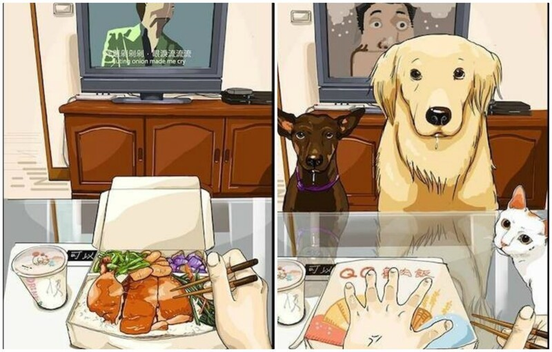 15 комиксов о том, как меняется жизнь после появления питомцев в доме (16фото)