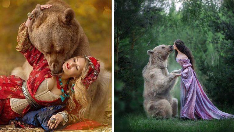 Бурый медведь из России делает успешную карьеру модели (26фото)