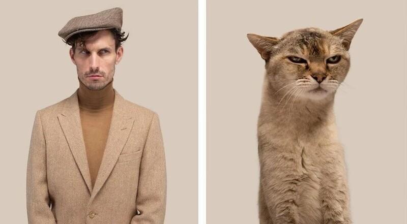 Почти не отличить: фотограф показал, как похожи коты со своими хозяевами (20фото)