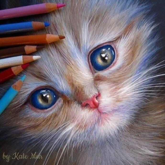 Очаровательные животные от художницы Kate Mur (22фото)